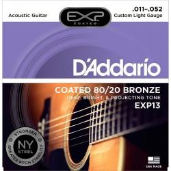 D'Addario EXP13 NY /11-52/