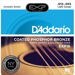 D'Addario EXP16 NY /12-53/