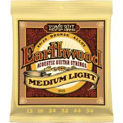 Ernie Ball 2003 /12-54/ Earthwood 80/20 Bronze