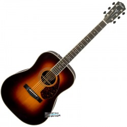 Fender PM-1 Deluxe Dreadnought SBST