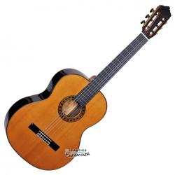 Luthier 2C