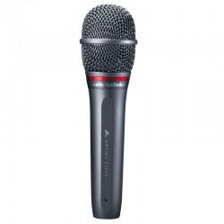 Audio-Technica AE6100