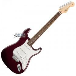 Fender Standard Stratocaster RW BK