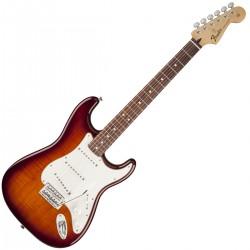 Fender Standard Stratocaster Plus Top RW TSB